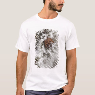 Lodgepole Pine cone in winter in Yellowstone T-Shirt