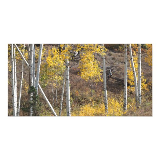 Log Fence in Autumn Woods Card