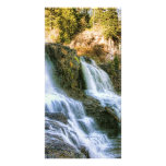 Log in the Falls Picture Card