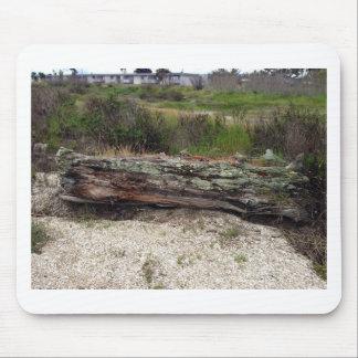 Log on the Beach Mousepad