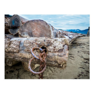 Log Sorting at Kilby Beach, Harrison BC Postcard