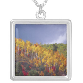 Logan Canyon in Utah in autumn with passing Silver Plated Necklace