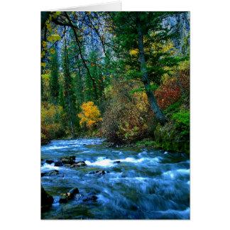 Logan Canyon River Card
