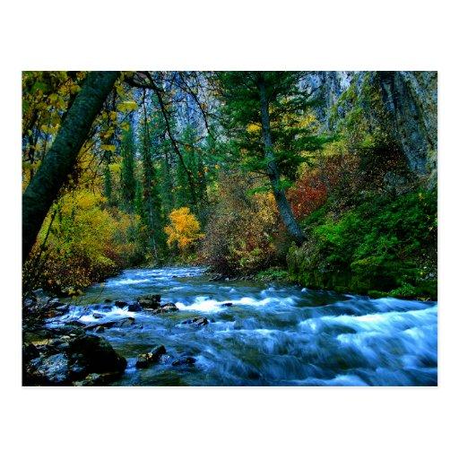 Logan Canyon River Post Cards