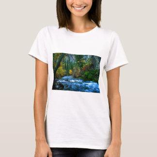 Logan Canyon River T-Shirt