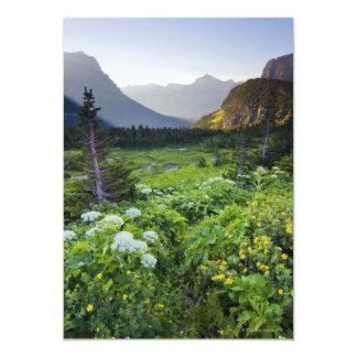 Logan Pass at Sunrise Card
