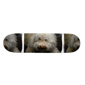 Logato Romagnolo Dog Skateboard