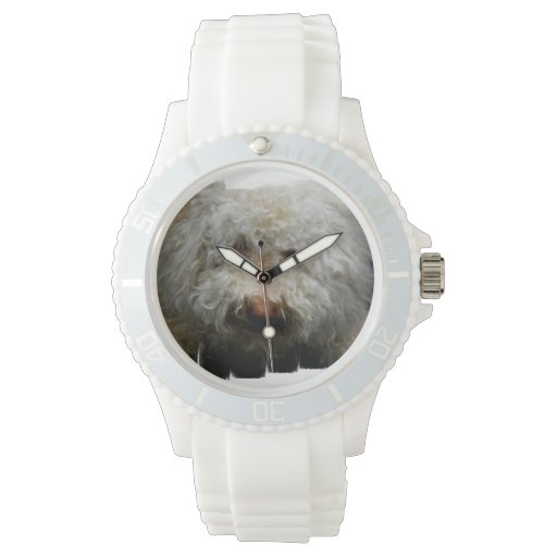 Logato Romagnolo Reloj De Mano