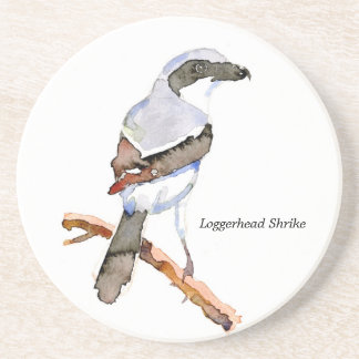 Loggerhead Shrike coaster