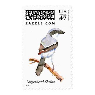 Loggerhead Shrike postage