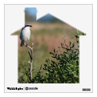 Loggerhead Shrike Wall Decal