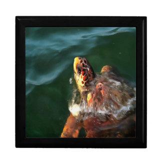 Loggerhead Turtle Keepsake Box