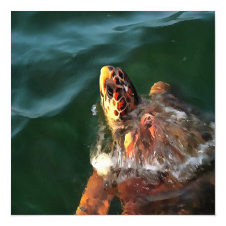 Loggerhead Turtle Magnetic Card
