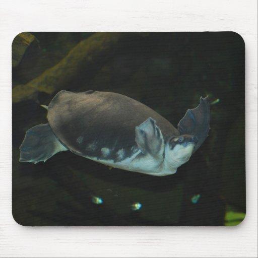 loggerhead turtle mouse pad