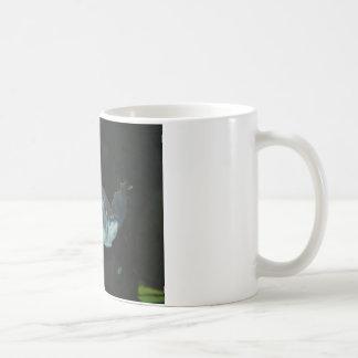 loggerhead turtle mugs