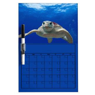 Loggerhead Turtle Swimming Blank Weekly Calendar Dry-Erase Board