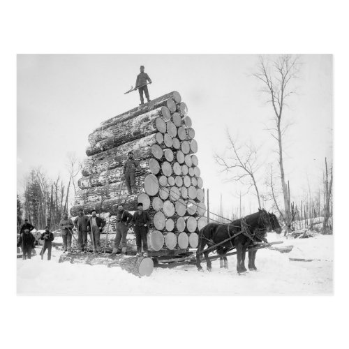 Loggers At Work 1890 Postcard