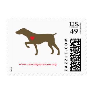 Logo Dog Stamps