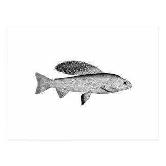 Logotipo ártico del Grayling (línea arte) Postal