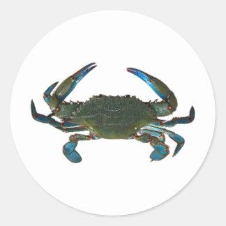 Logotipo atlántico del cangrejo azul pegatina redonda