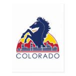 Logotipo azul de Colorado del caballo Tarjeta Postal