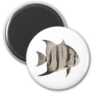 Logotipo de 3 pagualas imán redondo 5 cm