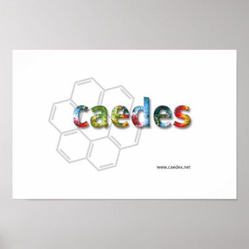 logotipo de Caedes.net Poster