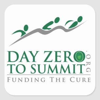 logotipo de DayZerotoSummmit.org Calcomania Cuadradas Personalizadas