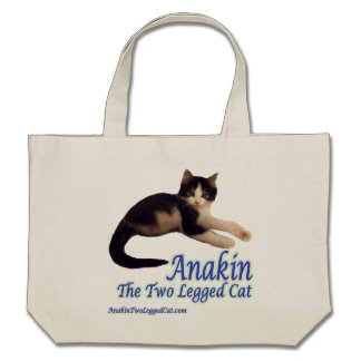 Logotipo de dos piernas del gato de Anakin la bol