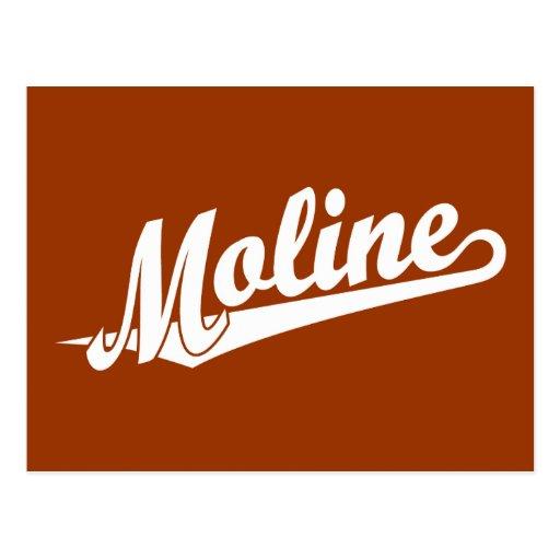 Logotipo de la escritura de Moline en blanco Tarjeta Postal