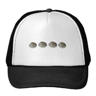 Logotipo de las almejas de la mercenaria gorra