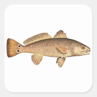 Logotipo de los salmones pegatinas cuadradas