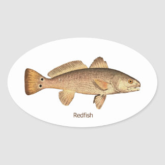 Logotipo de los salmones calcomania oval personalizadas