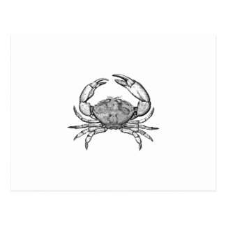 Logotipo del cangrejo de piedra (línea arte) tarjetas postales