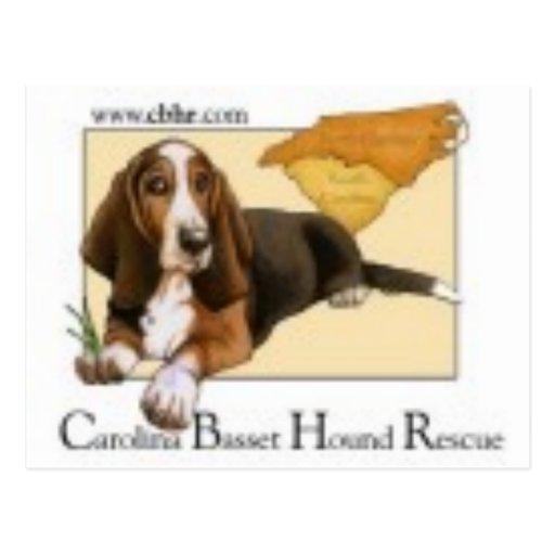 logotipo del cbhr postales