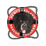 Logotipo del rescate de Newf Tarjeta Postal