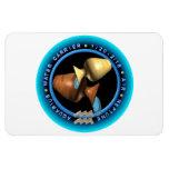 logotipo del zodiaco del acuario del valxart imán