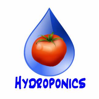 Logotipo hidropónico del diseño del descenso del a esculturas fotográficas