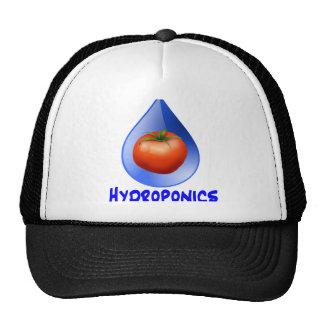 Logotipo hidropónico del diseño del descenso del a gorra