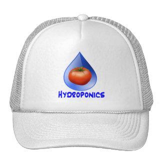 Logotipo hidropónico del diseño del descenso del a gorras