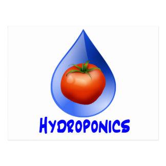 Logotipo hidropónico del diseño del descenso del tarjetas postales