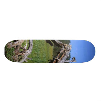 Logs Meadows Skate Board Deck