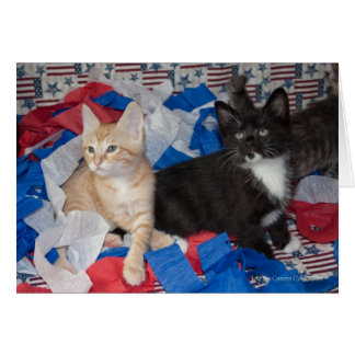 Loki & His Brother in Red, White, & Blue Card