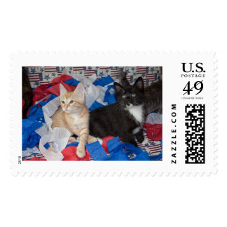 Loki & His Brother in Red, White, & Blue Postage Stamps