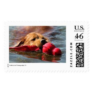 Loki I GOT THIS Postage Stamp