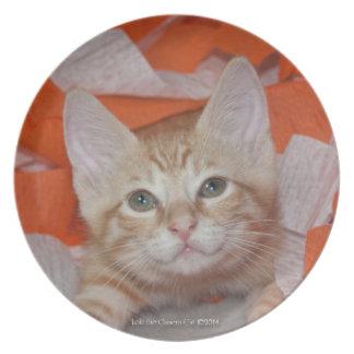 Loki in Orange & White Melamine Plate