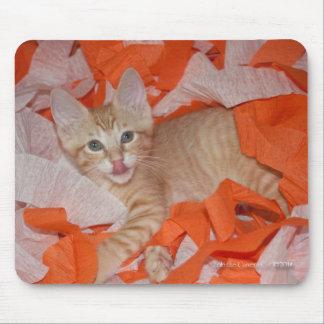 Loki in Orange & White Mouse Pad