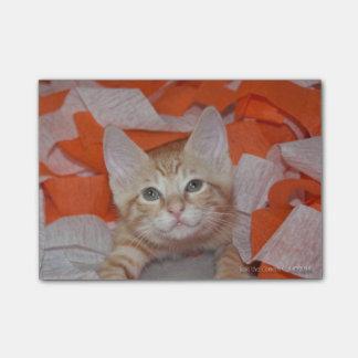 Loki in Orange & White Post-it® Notes