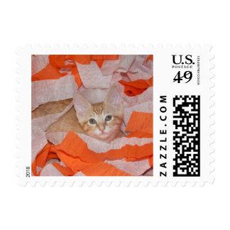 Loki in Orange & White Postage Stamps