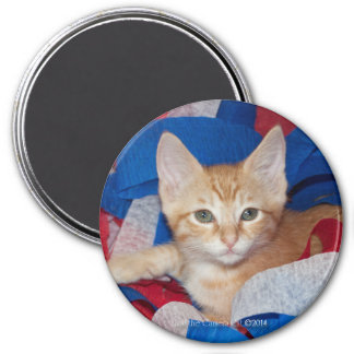 Loki in Red, White & Blue 3 Inch Round Magnet